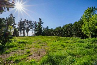 Photo 4: 2237 123 Street in Surrey: Crescent Bch Ocean Pk. Land for sale (South Surrey White Rock)  : MLS®# R2501116