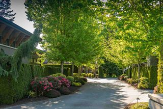 Photo 3: 2237 123 Street in Surrey: Crescent Bch Ocean Pk. Land for sale (South Surrey White Rock)  : MLS®# R2501116
