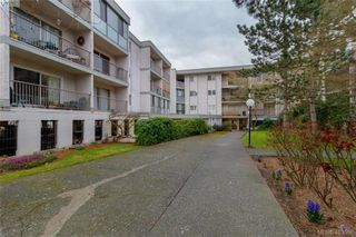 Photo 7: 318 3225 Eldon Place in VICTORIA: SW Rudd Park Condo Apartment for sale (Saanich West)  : MLS®# 423568