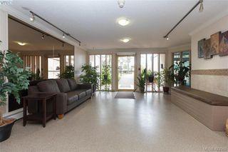 Photo 9: 318 3225 Eldon Place in VICTORIA: SW Rudd Park Condo Apartment for sale (Saanich West)  : MLS®# 423568