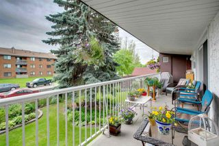 Photo 29: 204 14810 51 Avenue in Edmonton: Zone 14 Condo for sale : MLS®# E4203873