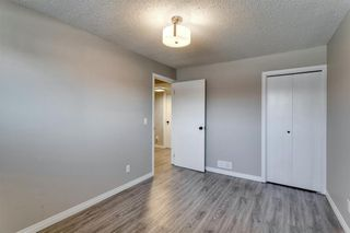 Photo 44: 3812 49 Street NE in Calgary: Whitehorn Detached for sale : MLS®# A1054455