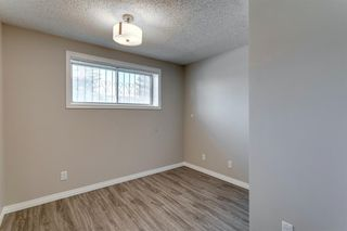 Photo 30: 3812 49 Street NE in Calgary: Whitehorn Detached for sale : MLS®# A1054455