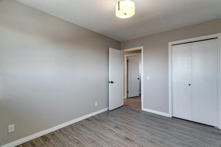 Photo 16: 3812 49 Street NE in Calgary: Whitehorn Detached for sale : MLS®# A1054455