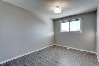 Photo 21: 3812 49 Street NE in Calgary: Whitehorn Detached for sale : MLS®# A1054455