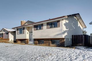 Photo 3: 3812 49 Street NE in Calgary: Whitehorn Detached for sale : MLS®# A1054455
