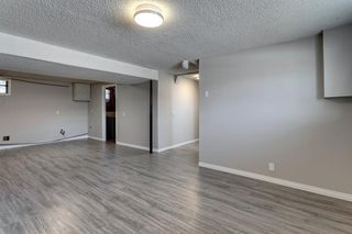 Photo 38: 3812 49 Street NE in Calgary: Whitehorn Detached for sale : MLS®# A1054455