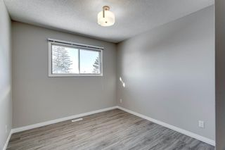Photo 28: 3812 49 Street NE in Calgary: Whitehorn Detached for sale : MLS®# A1054455