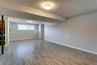 Photo 37: 3812 49 Street NE in Calgary: Whitehorn Detached for sale : MLS®# A1054455