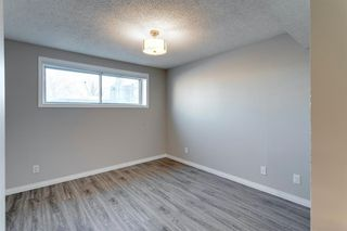 Photo 29: 3812 49 Street NE in Calgary: Whitehorn Detached for sale : MLS®# A1054455