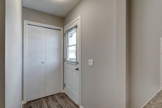 Photo 20: 3812 49 Street NE in Calgary: Whitehorn Detached for sale : MLS®# A1054455