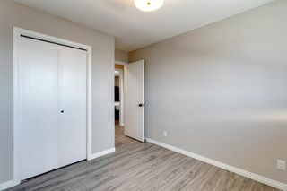 Photo 17: 3812 49 Street NE in Calgary: Whitehorn Detached for sale : MLS®# A1054455