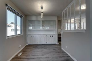 Photo 10: 3812 49 Street NE in Calgary: Whitehorn Detached for sale : MLS®# A1054455