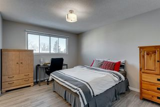 Photo 22: 3812 49 Street NE in Calgary: Whitehorn Detached for sale : MLS®# A1054455