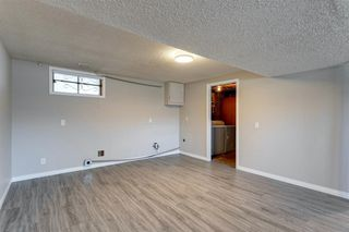 Photo 33: 3812 49 Street NE in Calgary: Whitehorn Detached for sale : MLS®# A1054455