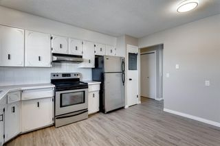 Photo 12: 3812 49 Street NE in Calgary: Whitehorn Detached for sale : MLS®# A1054455