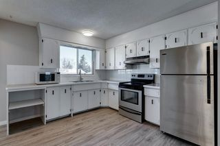Photo 14: 3812 49 Street NE in Calgary: Whitehorn Detached for sale : MLS®# A1054455