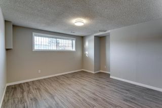 Photo 41: 3812 49 Street NE in Calgary: Whitehorn Detached for sale : MLS®# A1054455
