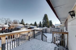 Photo 50: 3812 49 Street NE in Calgary: Whitehorn Detached for sale : MLS®# A1054455
