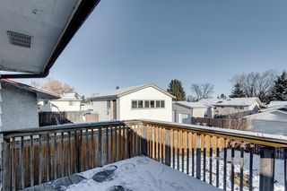 Photo 49: 3812 49 Street NE in Calgary: Whitehorn Detached for sale : MLS®# A1054455