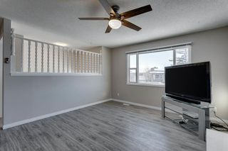 Photo 6: 3812 49 Street NE in Calgary: Whitehorn Detached for sale : MLS®# A1054455