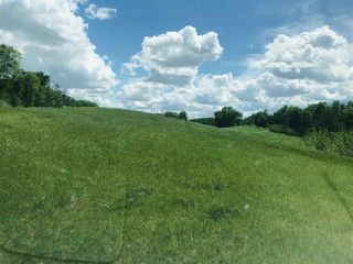 Photo 7: 51315 RR262 Road NW: Rural Parkland County Rural Land/Vacant Lot for sale : MLS®# E4223781