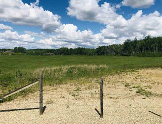 Photo 4: 51315 RR262 Road NW: Rural Parkland County Rural Land/Vacant Lot for sale : MLS®# E4223781