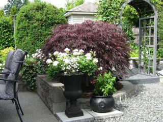 Photo 3: 1960 ST ANDREWS PLACE in COURTENAY: Other for sale : MLS®# 322351