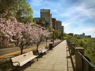 Photo 29: 405 10028 119 Street in Edmonton: Zone 12 Condo for sale : MLS®# E4195672