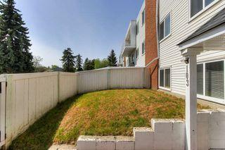 Photo 4: 103 14520 52 Street in Edmonton: Zone 02 Condo for sale : MLS®# E4200915