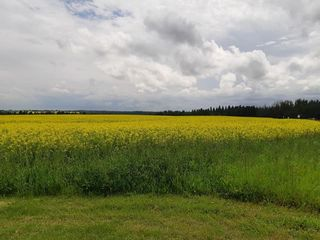 Photo 2: 3 Coal Mine Road: Rural Sturgeon County Land Commercial for sale : MLS®# E4207456