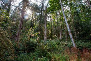 Photo 9: 1701 Greenpark Pl in : NS Swartz Bay Land for sale (North Saanich)  : MLS®# 851188