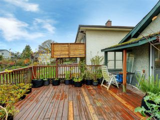 Photo 17: 3060 Albina St in : SW Gorge House for sale (Saanich West)  : MLS®# 860650