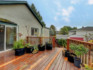Photo 18: 3060 Albina St in : SW Gorge House for sale (Saanich West)  : MLS®# 860650