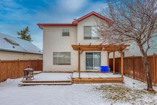 Photo 29: 14716 Mt Mckenzie Drive SE in Calgary: McKenzie Lake Detached for sale : MLS®# A1054201