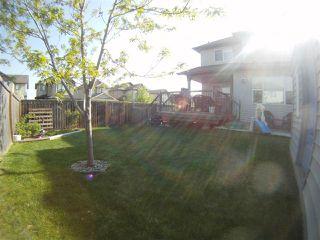 Photo 29: 16744 119 Street in Edmonton: Zone 27 House for sale : MLS®# E4166387