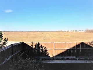Photo 29: 11314 173 Avenue in Edmonton: Zone 27 House for sale : MLS®# E4176389