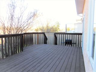 Photo 27: 11314 173 Avenue in Edmonton: Zone 27 House for sale : MLS®# E4176389