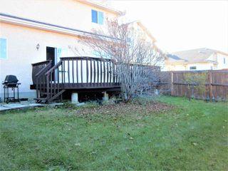 Photo 28: 11314 173 Avenue in Edmonton: Zone 27 House for sale : MLS®# E4176389