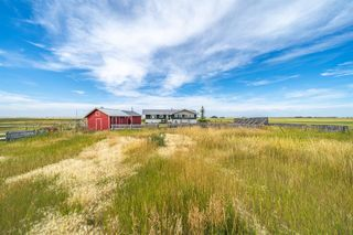 Photo 41: 288150 466 Avenue E: Rural Foothills County Detached for sale : MLS®# A1019465