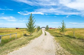 Photo 42: 288150 466 Avenue E: Rural Foothills County Detached for sale : MLS®# A1019465