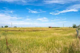 Photo 45: 288150 466 Avenue E: Rural Foothills County Detached for sale : MLS®# A1019465