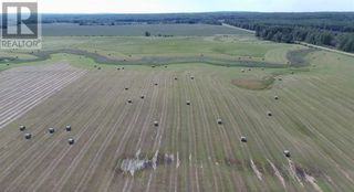 Photo 33: 16329 Township Road 714A Road in High Prairie: Agriculture for sale : MLS®# A1020013