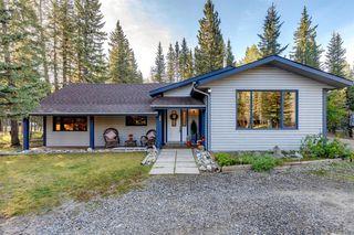 Photo 41: 89 WHITE Avenue: Bragg Creek Detached for sale : MLS®# A1026270