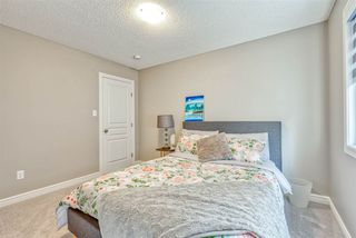 Photo 20: 16343 18 Avenue in Edmonton: Zone 56 House for sale : MLS®# E4171490