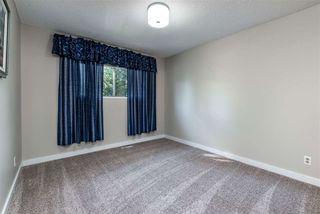 Photo 20: 7823 34A Avenue in Edmonton: Zone 29 House for sale : MLS®# E4174649