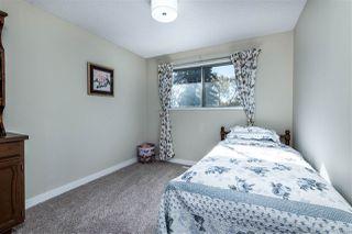 Photo 19: 7823 34A Avenue in Edmonton: Zone 29 House for sale : MLS®# E4174649