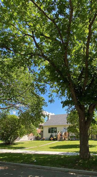 Photo 4: 10821 112 Street in Edmonton: Zone 08 House for sale : MLS®# E4203597