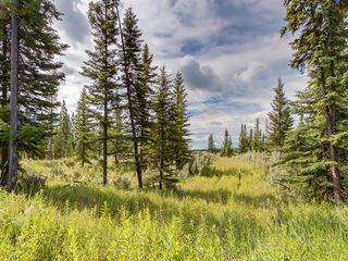 Photo 8: 7 34364 RANGE ROAD 42: Rural Mountain View County Land for sale : MLS®# A1017817