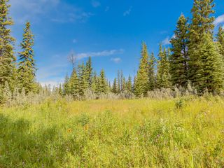 Photo 12: 7 34364 RANGE ROAD 42: Rural Mountain View County Land for sale : MLS®# A1017817